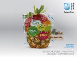 Intercultural Working trend report